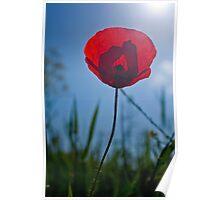 Towards Sun Poster