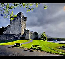 Moon over Ross Castle by John Walsh, IRELAND