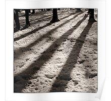Winter Shadows - Hertford Heath Poster