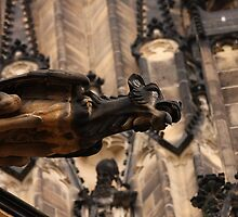 Gargoyle, Prague Cathedral, Czech Republic by LisaRoberts