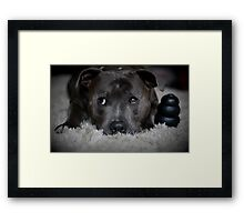 Me and my Kong Framed Print