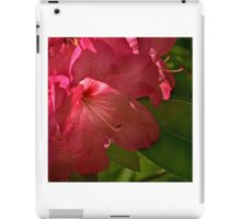 Red Azalea iPad Case/Skin