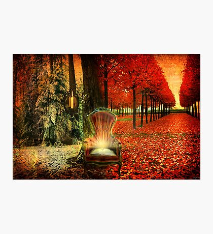 A Time and A Season Photographic Print