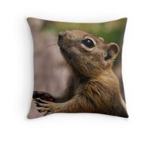 Paws  Throw Pillow