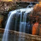 Minnehaha Falls by Angela King-Jones