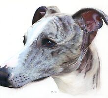 Lily by Karen  Hull