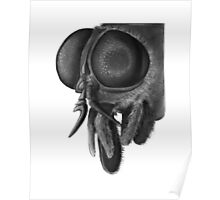 Horsefly, close up of head Poster