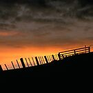 Barrabool Hills Skyline by Joe Mortelliti