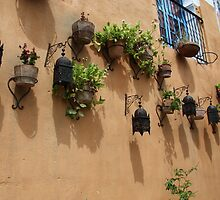 Lamps and plants on wall in Morocco by Christine Oakley