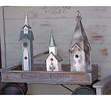 Comet Coaster Birdhouse Trio Photographic Print