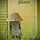 Garden G-nome by Colleen Milburn