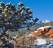 A Fresh Winter Morning by John  De Bord Photography