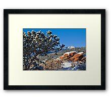 A Fresh Winter Morning Framed Print