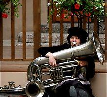 Musician by Bluesrose