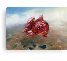 One fish, Red fish  Canvas Print