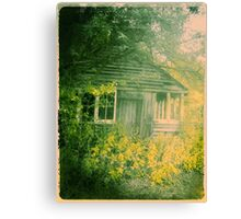 Age Old Canvas Print