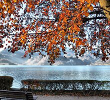Lake and Golden Leaves by Daidalos