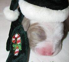 Happy Holidays by Ginny York