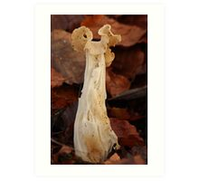 Natures Sculpture Art Print