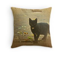 Small, sweet kitten Throw Pillow