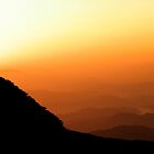 Orange Crush - Gayasan National Park, South Korea by Alex Zuccarelli