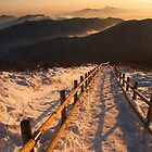 Golden Summit - Deogyusan National Park, South Korea by Alex Zuccarelli