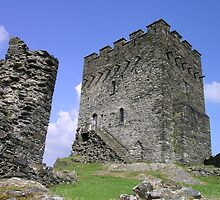 Dolwydellan Castle Ruins Mid Wales 7 by Lawson Clout