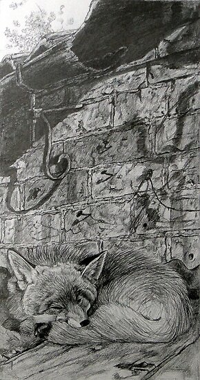 Sleeping Mr Fox by Robert David Gellion