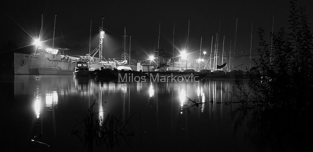 Harbor by Milos Markovic