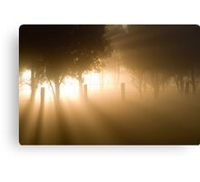 Ray of Light - Mount Macedon -Victoria - Australia Canvas Print