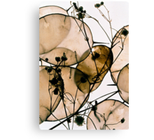 Natural Honesty Canvas Print