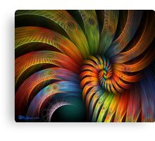 Rooster Tail Spiral Canvas Print