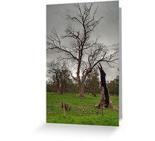 Energising Nature Greeting Card