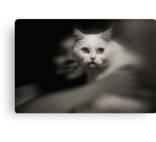Wish i had a lensbaby ! :))) Canvas Print