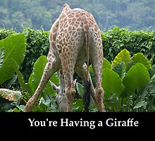 You're having a Giraffe! by brevans