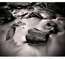 Cry me a River Photographic Print