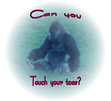Touch Your Toes Photographic Print