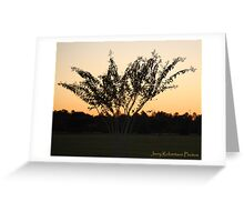 Lat afternoon Crepe-Myrtle Greeting Card