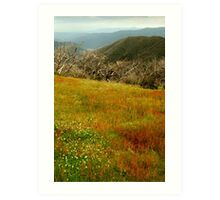 Colours Of The Victorian High Country Art Print