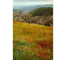 Colours Of The Victorian High Country Photographic Print