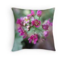 Macro Pink Allysum Throw Pillow