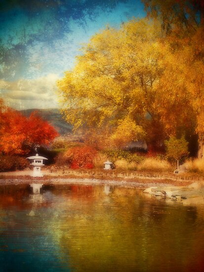 The Colourful Conclusion of Autumn by Tara  Turner