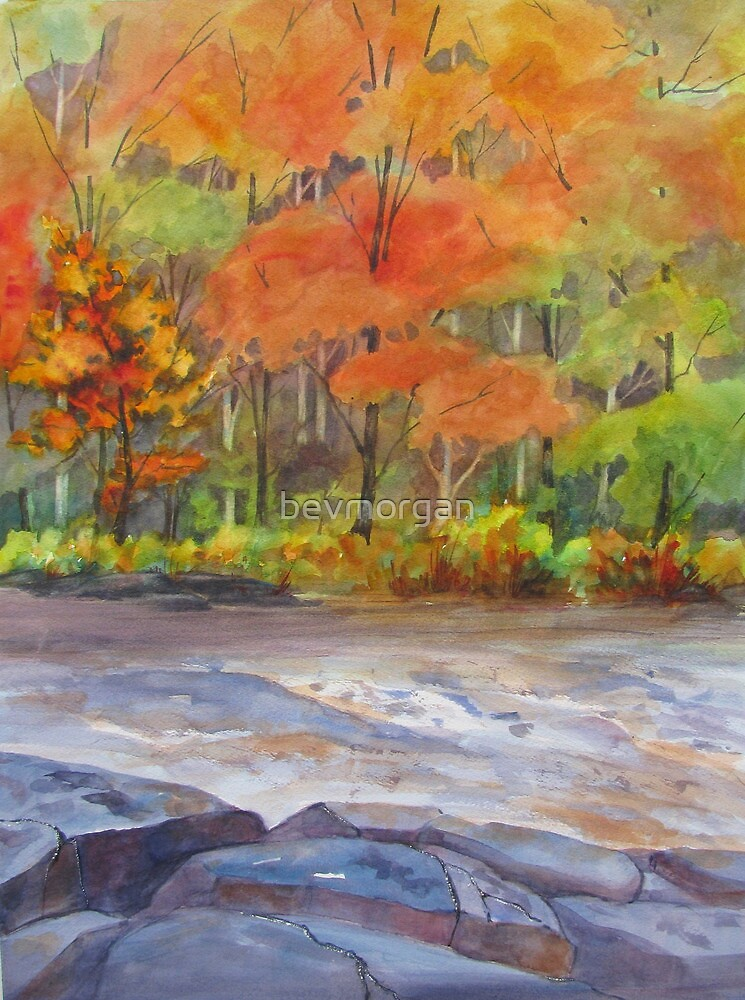 Autumn on the Oxtongue by bevmorgan