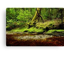 The shingle bank Canvas Print