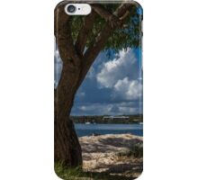 Sand and Seagulls iPhone Case/Skin