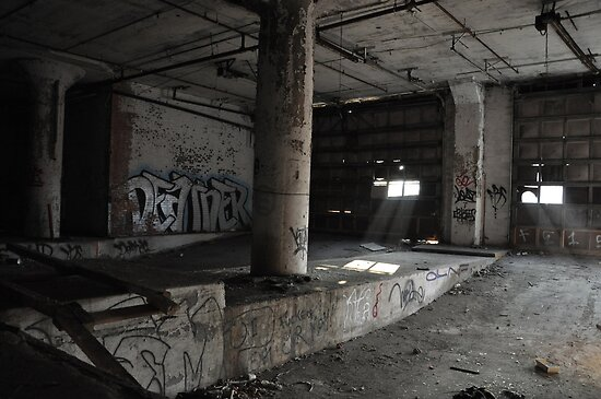 Abandoned Detroit 6 by Amber Williams