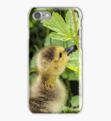 Gosling  iPhone Case/Skin