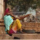 Chittorgarh Vendor, Rajasthan, India by RIYAZ POCKETWALA