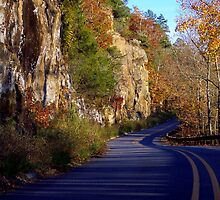 Gorgeous Cliff Side Drive by NatureGreeting Cards ©ccwri