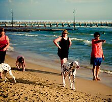 Dog day at South Melbourne by Geraldine Lefoe